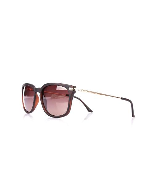 Unisex Brown Frame Sunglasses